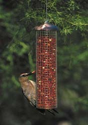 WBU Copper Top Peanut Feeder